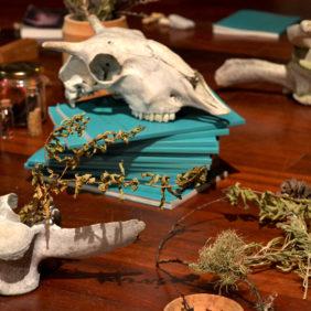 Instalación 'Médiums: Una exploración colectiva sobre lo invisible en el Prat'